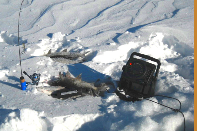 Ice fishing report mn fish lake winnie leech cass for Idaho ice fishing report